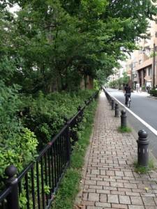 夏の終わりの「風の散歩道」